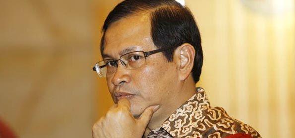 Wasekjen Demokrat: Dosen USU Seharusnya tak Dipidana, Seperti Halnya Pramono Anung dan Trimedya