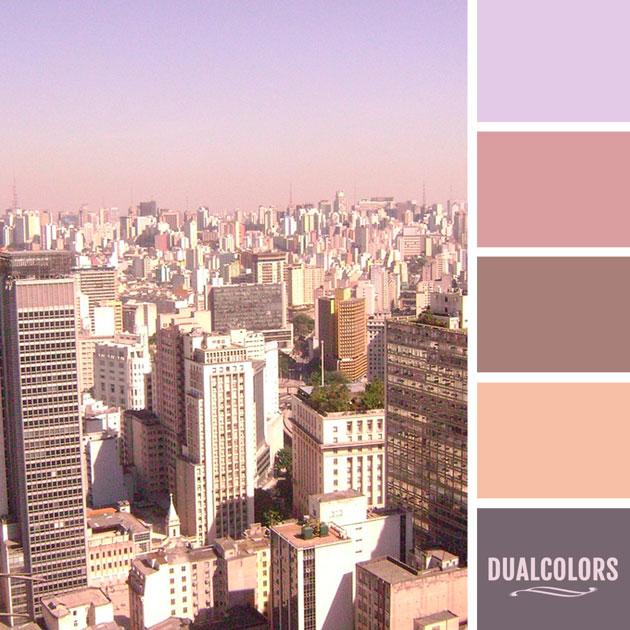 color_paleta_236