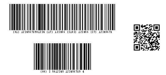 Rental Car Barcodes