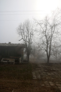 The fog, with the sun starting to burn through