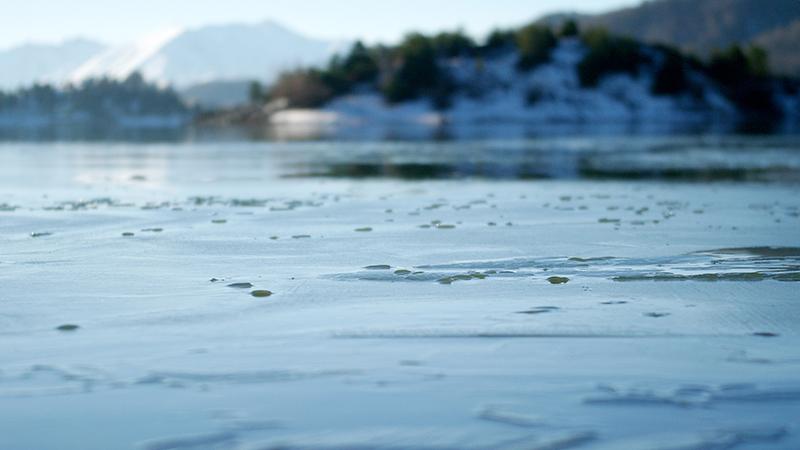 Ladon Lake - Vikos Greece- https://terriermigrateur.blogspot.fr/- ©Le Terrier Migrateur -