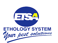Lowongan Kerja Account Executive di PT Etos Suryanusa - Semarang