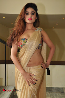 Sony Charishta Pictures in Saree at Aura Fashion Exhibition Launch ~ Celebs Next
