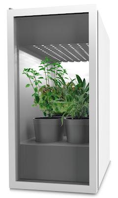 modelo de horta