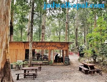 harga-tiket-masuk-mojosemi-forest-park