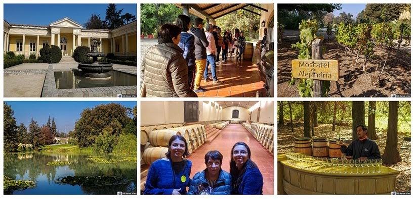 Tour na Vinícola Concha y Toro - Diário de Bordo Chile: 8 dias em Santiago e arredores