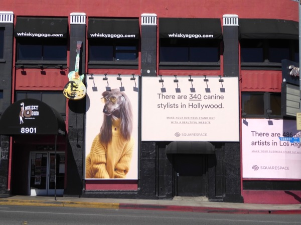 Squarespace canine stylists Hollywood billboard