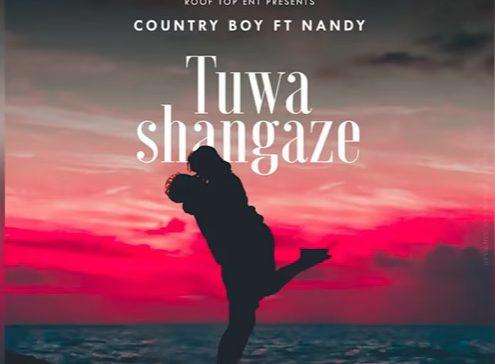 Country Boy Ft Nandy - Tuwashangaze