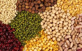 Agri commodity calls, Agri Commodity Tips, Free  Commodity Tips, Free Agri Tips, MCX Tips Services, Mustard seed tips,