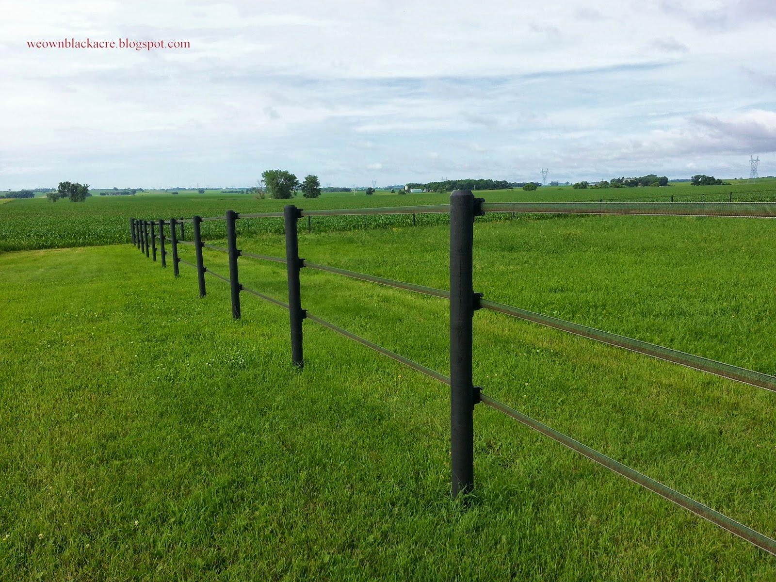 Horseguard Bi Polar Fence Tape Review Or The Post I Wish