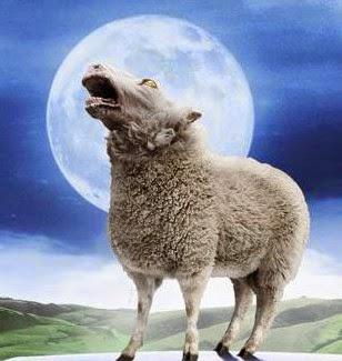 Ο λύκος κράζει τα πρόβατα