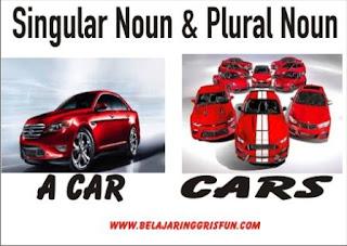 singular noun dan plural noun