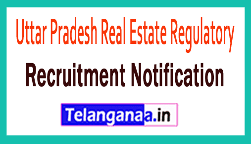 Uttar Pradesh Real Estate Regulatory UP RERA Recruitment