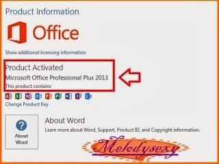 Melody~ Blogger^^ The Software sarhing space~*: **繁.英.葡.韓.德五國語系之--免費永久激活微軟 Microsoft Office 2013 ...