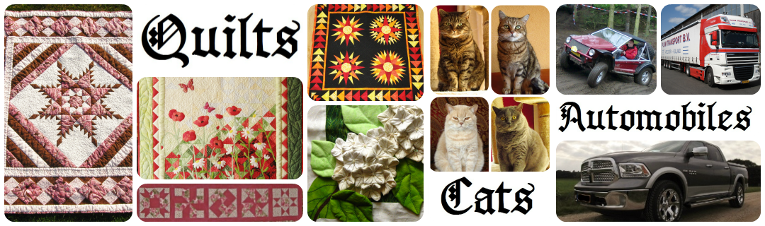 Quilts, Cats and Automobiles