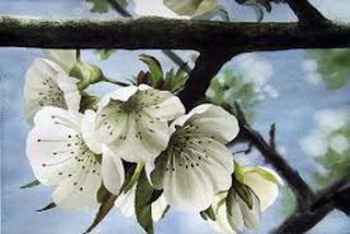bodegones-flores-acuarela