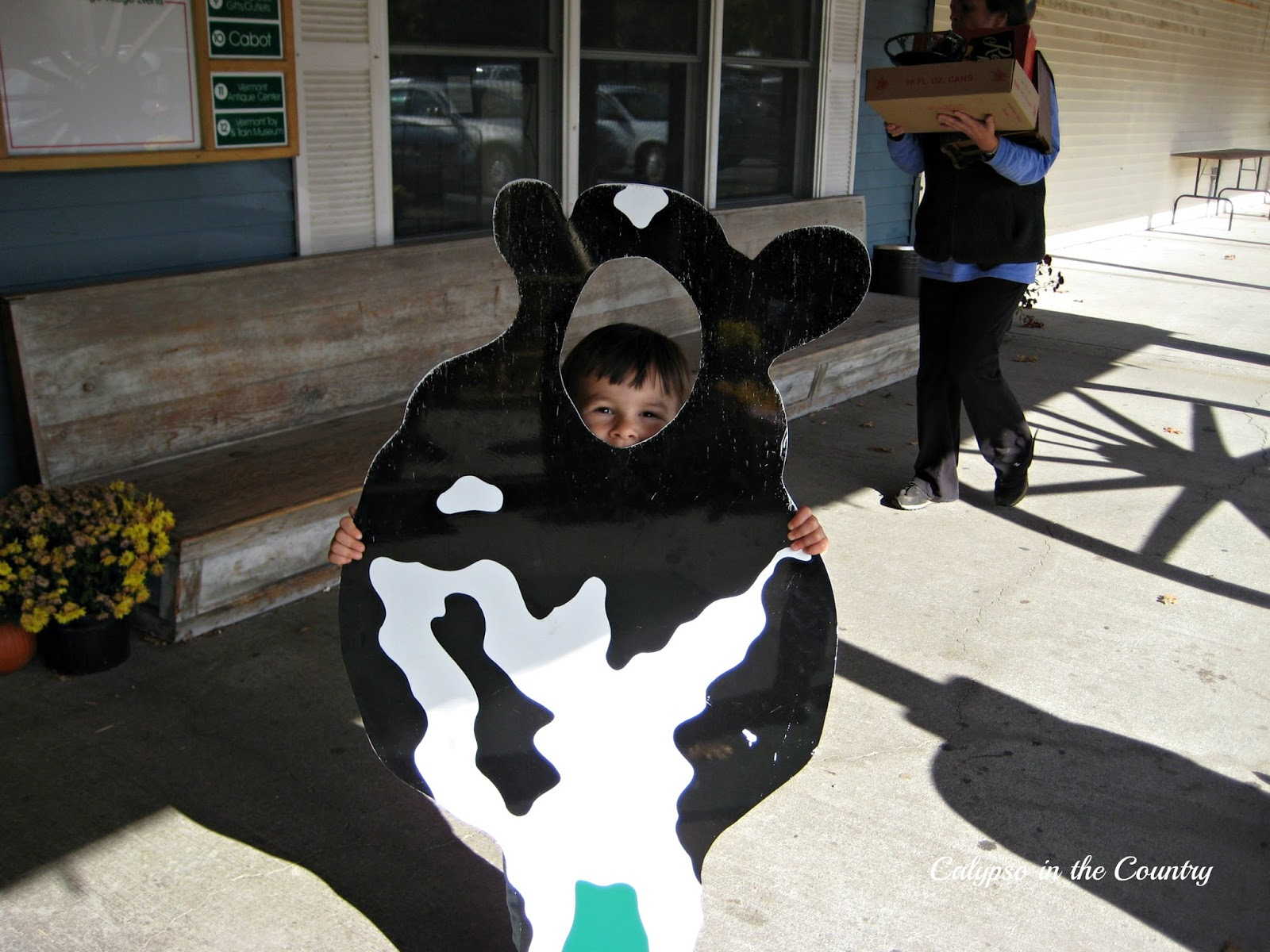 Cabot Cheese Cow