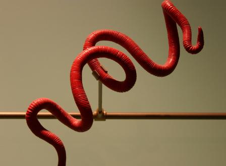 Image result for कृमि रोग (पेट के कीड़े
