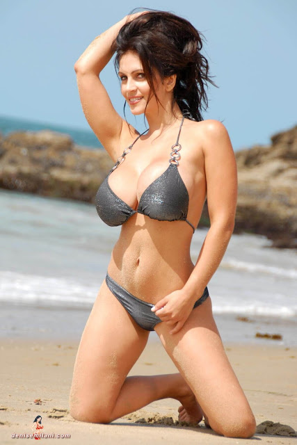 Denise-Milani-Beach-Silver-bikini-hottest-photoshoot-pics-31