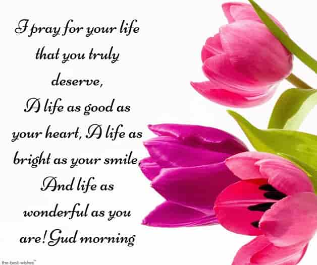 i pray for your life sms with flowers