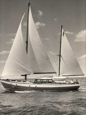 Sparkman and Stephens Design 247 aka Flying Gull (Courtesy, Sparkman & Stephens)