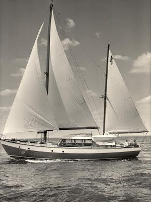 Sparkman and Stephens Design 247 aka Flying Gull (Courtesy, Sparkman & Stephens)