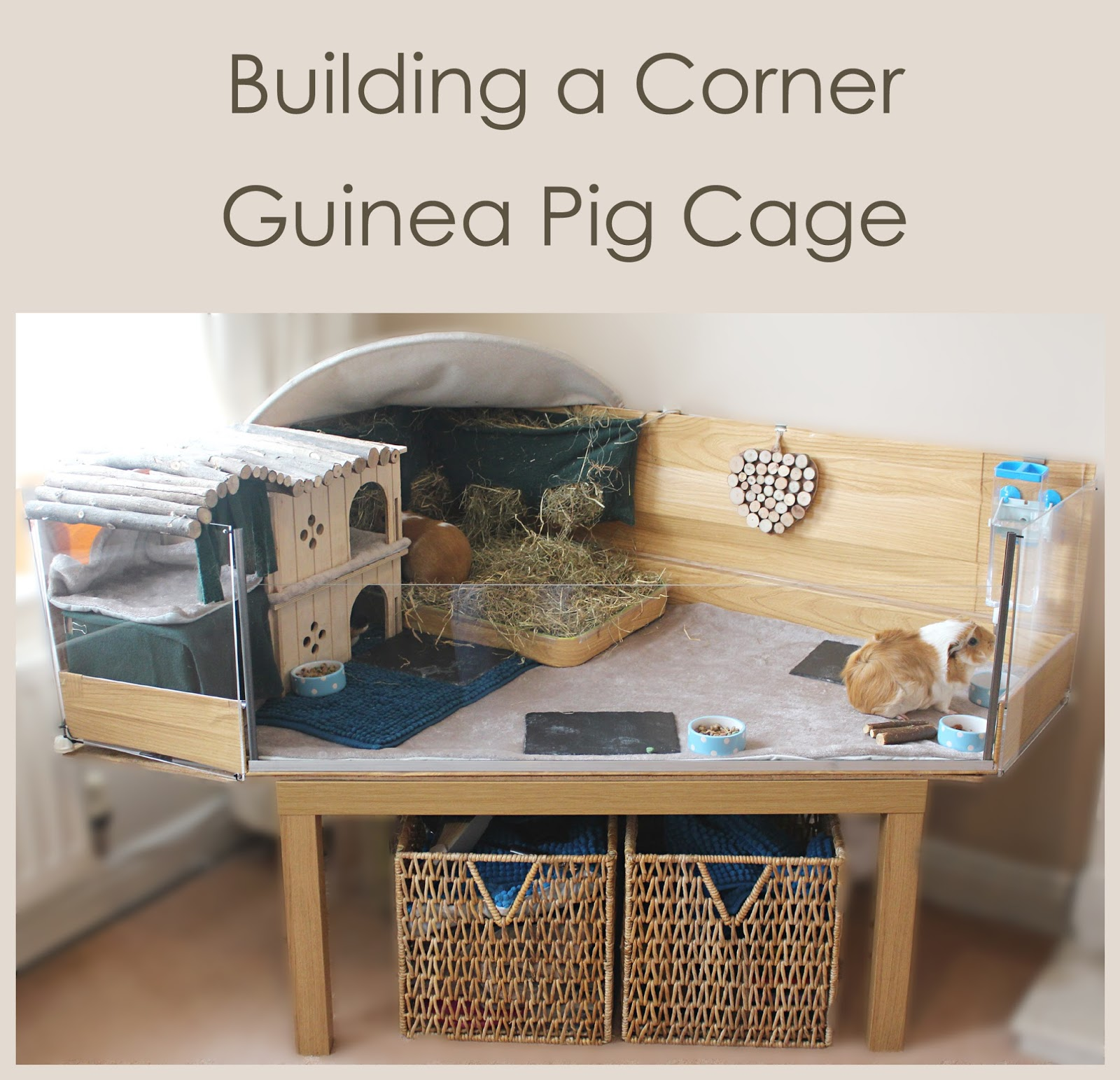 Building a corner diy c and c style guinea pig cage with a for Guinea pig dresser cage