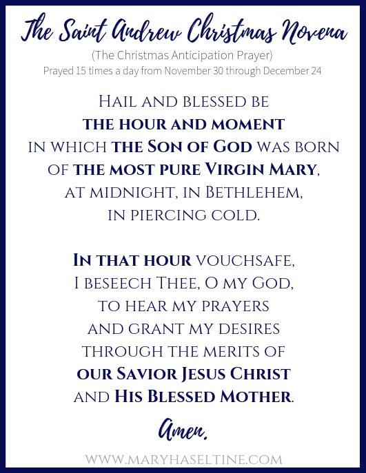 graphic about St Andrew Novena Printable referred to as The Saint Andrew Xmas Novenaand Start (with free of charge