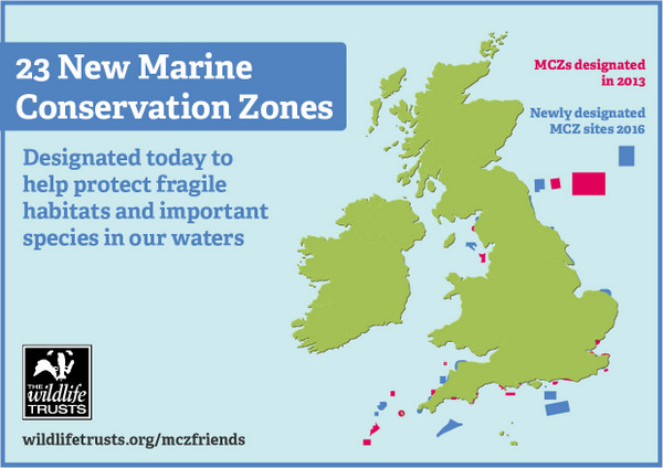 Become a friend of Marine Conservation Zones