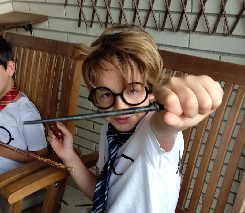 Cumpleaños Harry Potter. Fiesta niños DIY