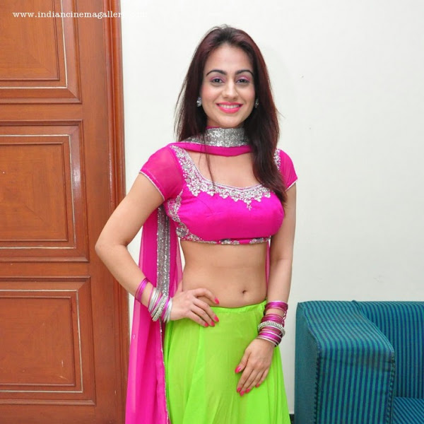 Aksha Pardasany hot navel show photos from Crescent Cricket Cup 2015 curtain raiser
