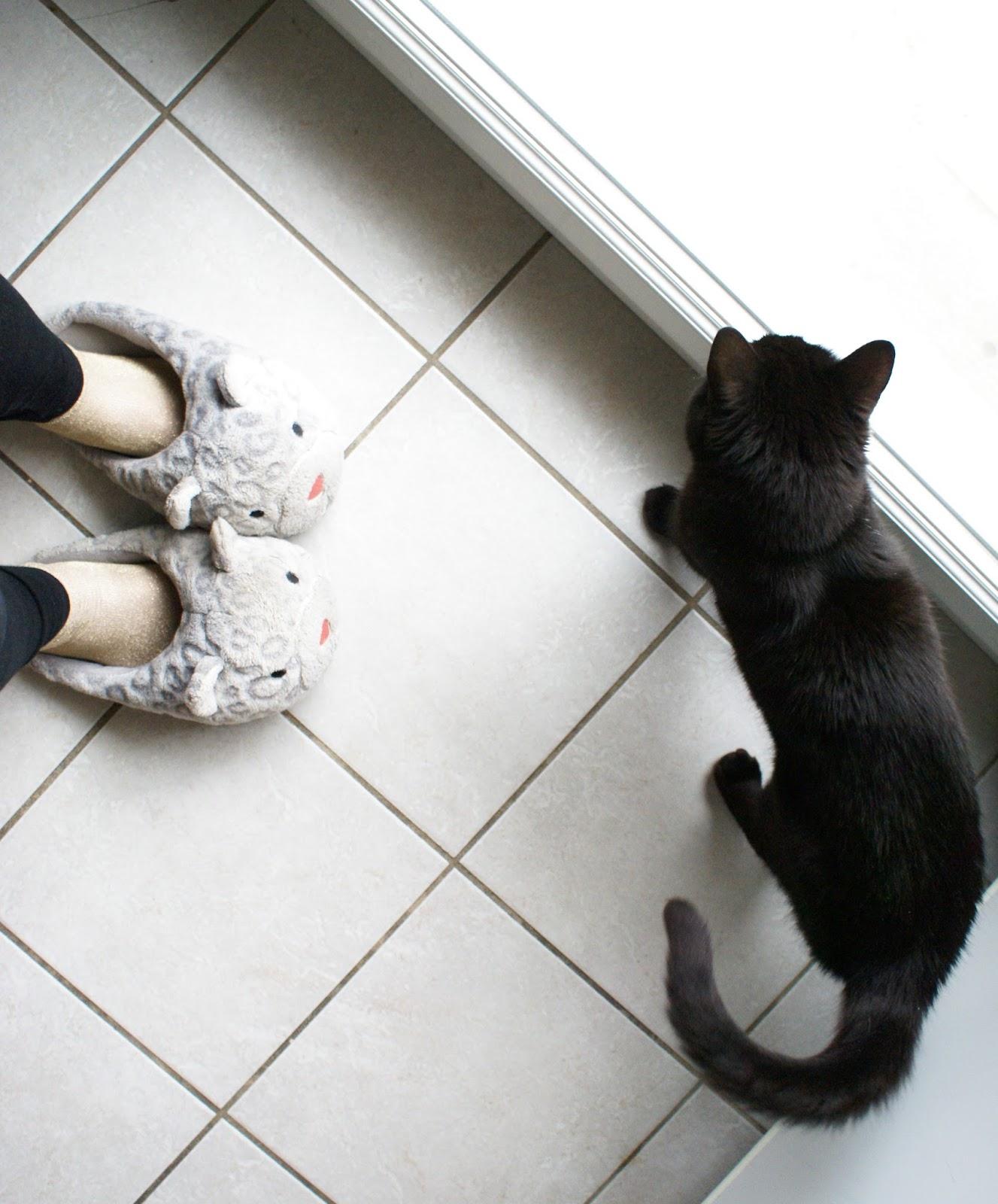cat slippers neko home
