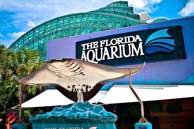 Florida Aquarium Tampa