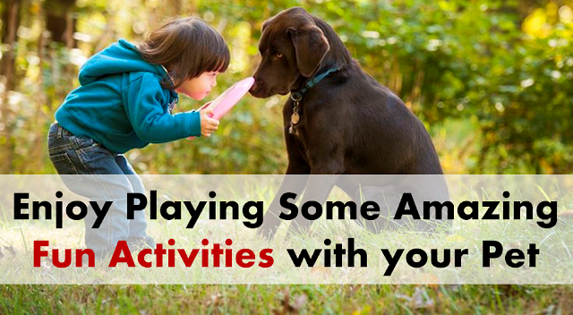 pet activities for kids