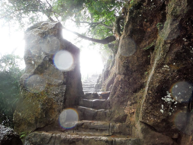 stairs during rain yen tu vietnam