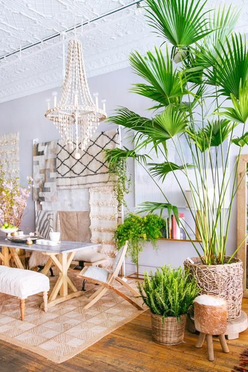The Studio M Designs Blog Styling Essentials Plants