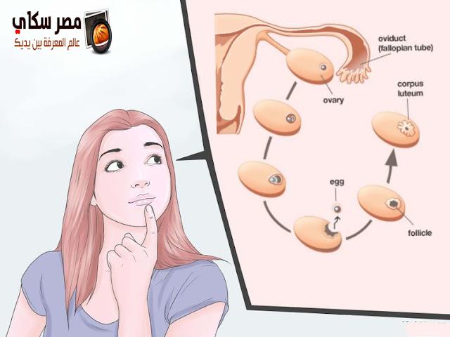 أسباب عدم مجىء الحيض أو تأخره  Amenorrhea