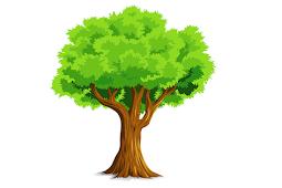 Ada yang Tahu 1 Pohon Mampu Menghasilkan Oksigen untuk Berapa Orang Selama 1 Tahun?