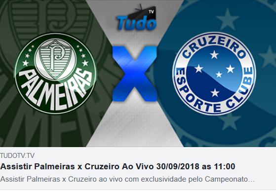 Assistir Palmeiras x Cruzeiro Ao Vivo 30/09/2018 as 11:00 (TV TUDO)