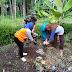 Jaga Kebersihan Lingkungan, Babinsa Kebonsari Bersama Tim Kesehatan Puskesmas Yosowilangun Gelar PSN