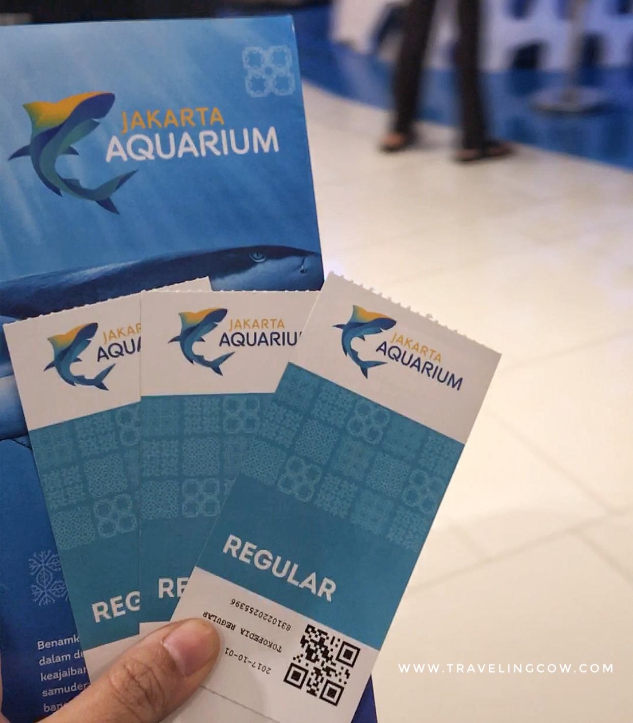 Berkunjung Ke Jakarta Aquarium