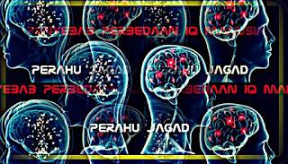 Tingkatan Intelegensi yang dimiliki manusia