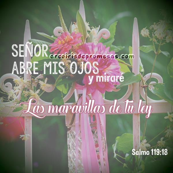 señor abre mis ojos reflexiones cristianas con imágenes arcoiris de promesas