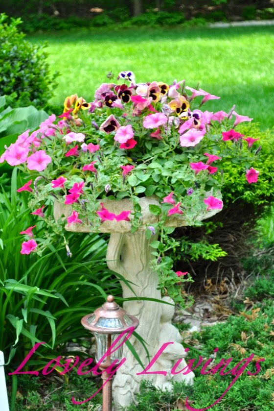 Bird Bath Garden Planter