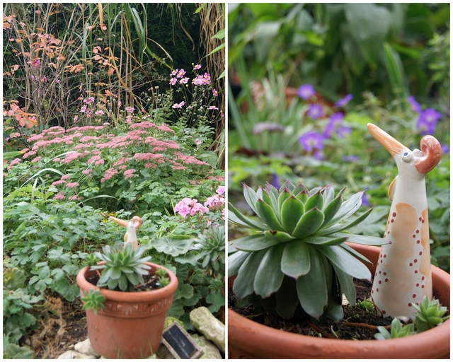 Terrassenbeet mit Herbstbepflanzung aus Sedum und Geranium