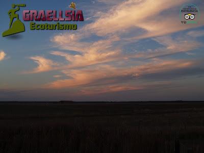 Excursión ornitológica en las Lagunas de El Oso