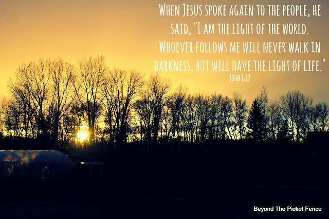 bible verse, inspiring verse, the light, photography, sunset, Jesus is the light,http://bec4-beyondthepicketfence.blogspot.com/2016/04/sunday-verses_10.html