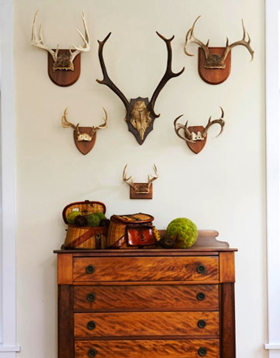 animal antlers as decor, rustic dresser, rustic decor