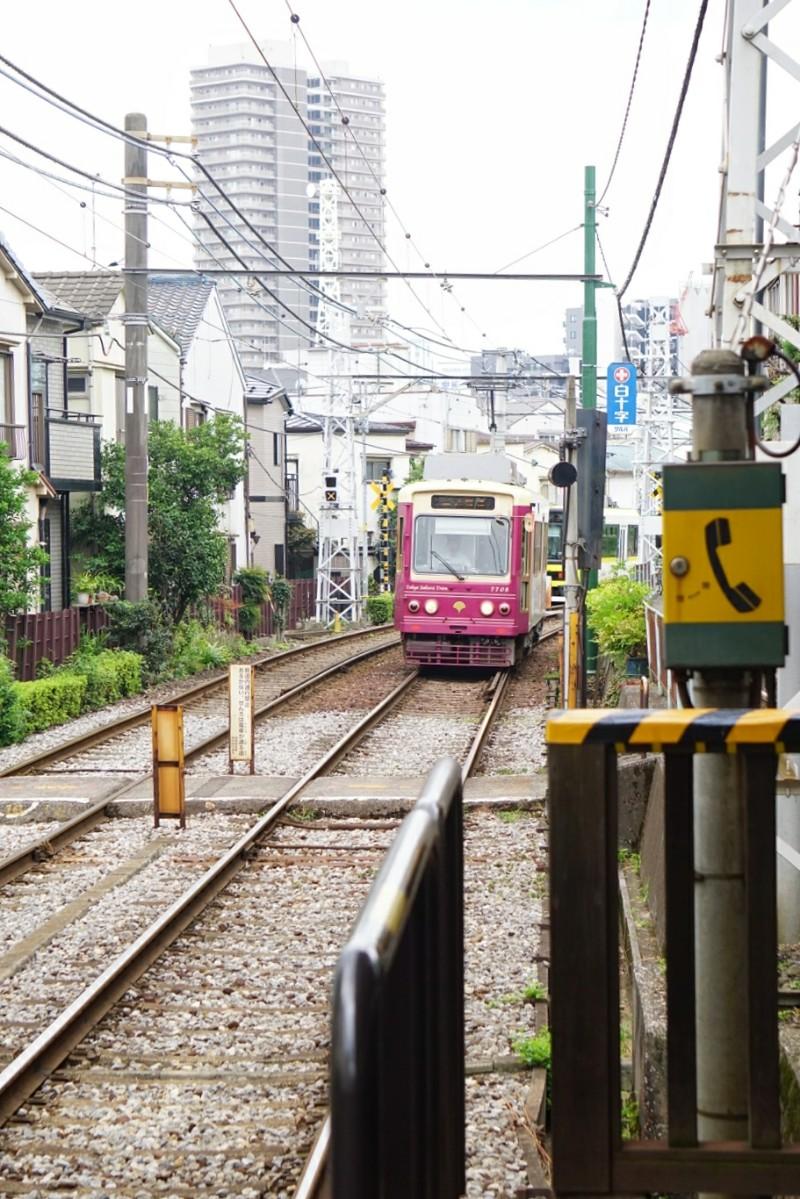 tokio_sakura_line, tokio_raitiovaunu