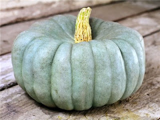 blue pumpkin with flattened top sitting on a wooden table